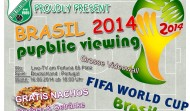 WM Brasil´2014 – public viewing